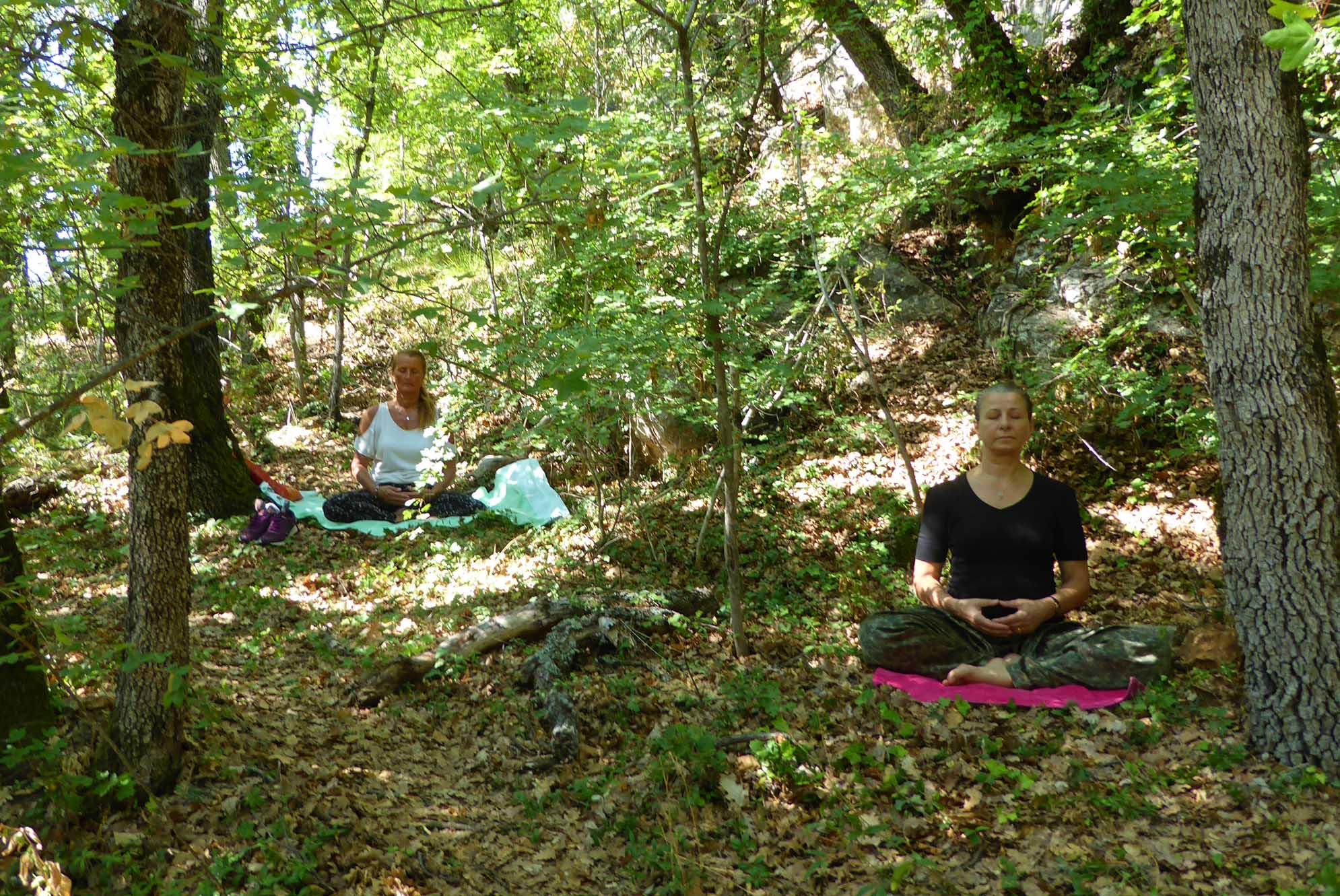 retraite yoga Luberon